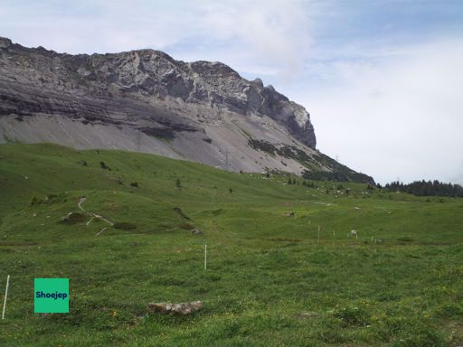 Switzerland 2011 #10